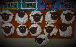 plastik tabak-pamuk ve evadan koyunlarımız